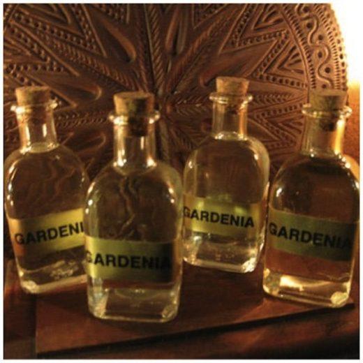 contra-mal-de-ojo-y-envidia-gardenia-magica